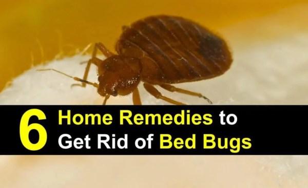 six home remedies