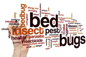 Bed Bugs - Presidio Pest Management