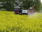 The scientific advice body will provide guidance on GM and pesticides
