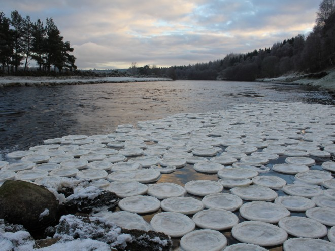 Ice pancakes at the Lummels Pool at Birse, near Aboyne