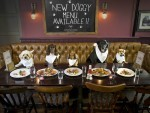 TREAT: The pub has launched a menu for dogs