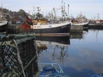 Fraserburgh harbour. Fishing boats and trawlers.