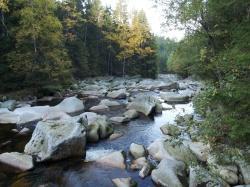 (Foto: WaldZeit): Wild und verwunschen: Die Vydra mit vielen Stromschnellen, Felsblöcken und unregelmäßigen Schwellen im Flussbett