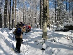 3.Lust auf das Abenteuer Schneeschuhwanderung? Das neue Winterprogramm bietet zahlreiche kostenlose Regel- und Sondertouren an.