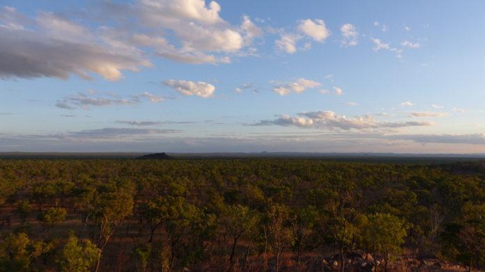 Superlative am anderen Ende der Welt Der Reiz von Mietwagenreisen entlang der Ostküste Australiens