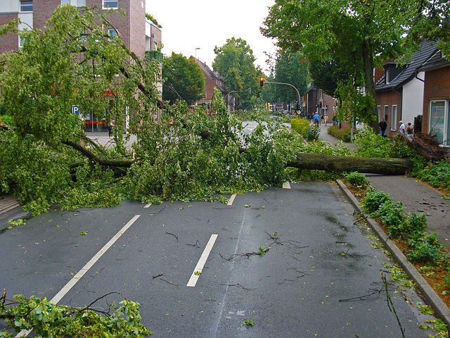 Superzelle prallt jetzt auf Norddeutschland - es drohen Tornados