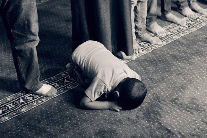 Gauland: Wir müssen unsere Nachsicht gegenüber dem Islam aufgeben