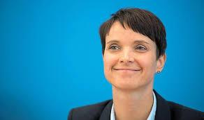 Frauke Petry,Politik,AfD