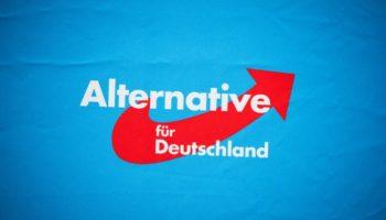 AfD,Wahlen,News,Politik,Hannover,Alexander Gauland,Jörg Meuthen
