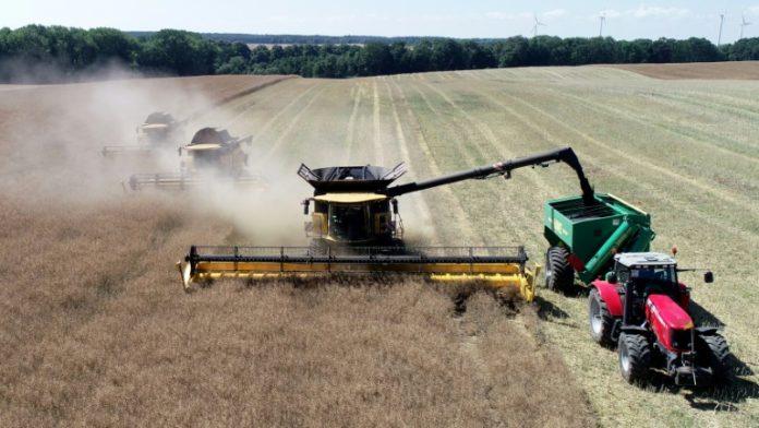 Bauernverband fordert eine Milliarde,Bauernverband,Nachrichten,Ernteausfälle,Ernten, Julia Klöckner,Politik,Berlin,Bund und Länder