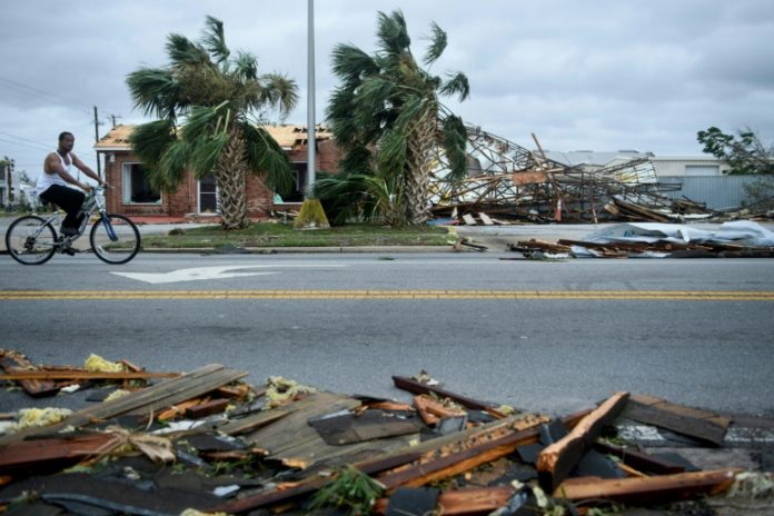 Michael,Hurrikan,Florida ,Panama City,Präsident, Donald Trump,Nachrichten,Ausland