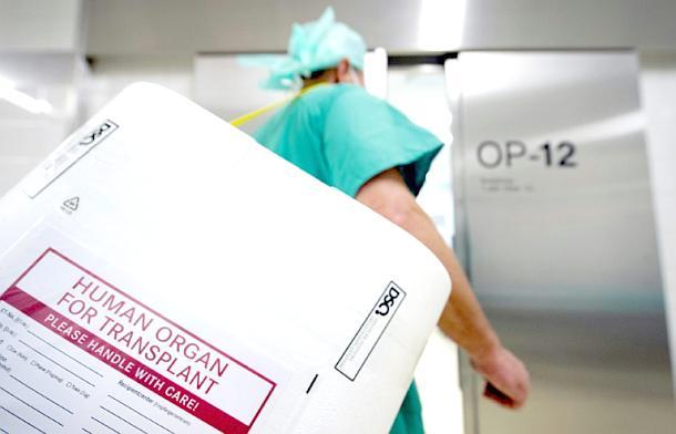 Organspendesystems,News,Presse