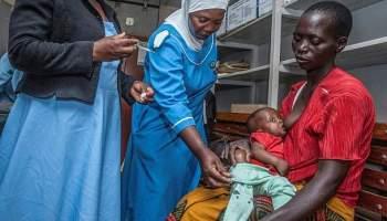 Malaria, Gesundheit,Presse,News,Medien,Aktuelle