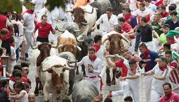 Stiertreiben,Pamplona,Presse,News,Medien