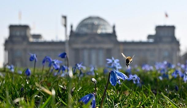 Berlin,Wahlrechtsreform,Politik,Presse,News,Medien,Aktuelle