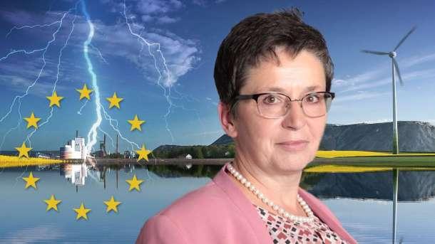 Sylvia Limmer, AfD,Politik,Presse,News,Medien