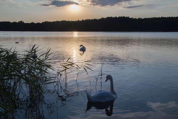 Mecklenburgische Seenplatte hebt strenge Corona-Maßnahmen auf