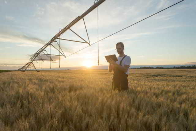 Landwirtschaft,Politik,Presse,News,Medien