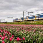 treni a vento olanda