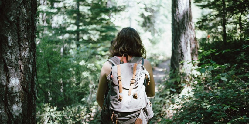 Urlaub im Wald