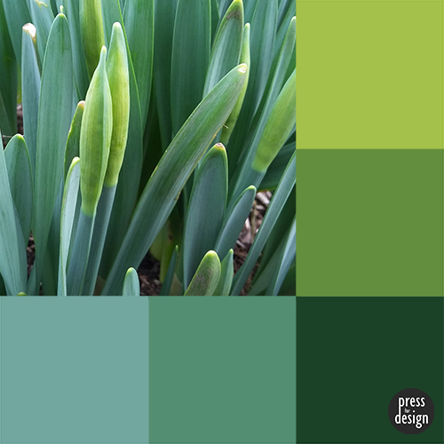 Tuesday Colour Inspiration: Promise of Spring