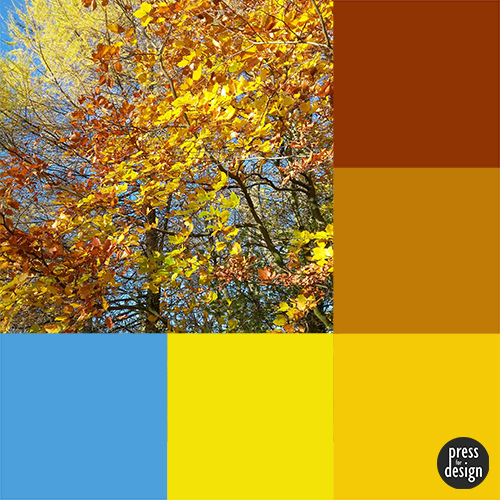 Autumn Leaves colour inspiration swatch