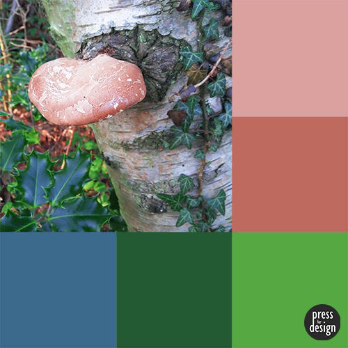 Tuesday Colour Inspiration: The Holly and the Ivy and the Razor Strop