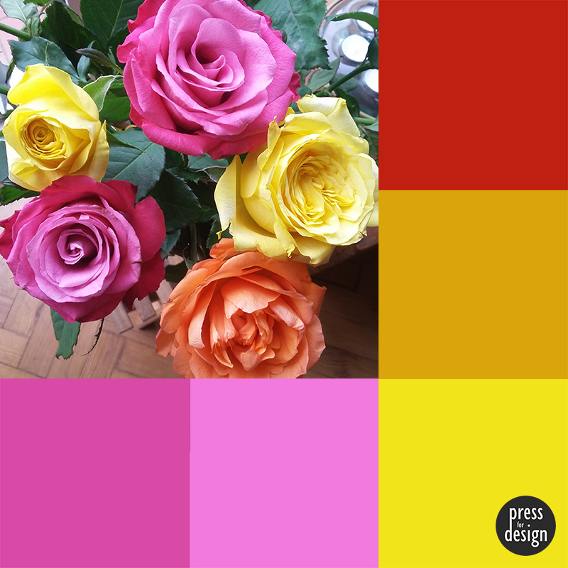 Tuesday Colour Inspiration – Roses