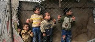 Çocuklar için yıkıcı bir yıl: 2014