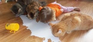 Çocuklar ve Hayvanların İnanılmaz Dostlukları