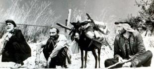 SİYAD'ın seçimiyle 100 yılın en iyi 10 filmi