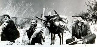 Sinema Yazarları Derneği (SİYAD) 47. SİYAD Ödülleri 11 Mart'ta düzenlediği törenle sahiplerini buldu. İlgili haberimize buradan ulaşabilirsiniz. Ayrıca SİYAD üyeleri, gecen yıl 100. yılını kutlayan Türkiye sinemasının en iyi 100 filmini de seçti.