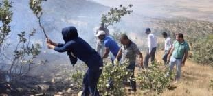 Engellemelere rağmen orman yangını söndürüldü