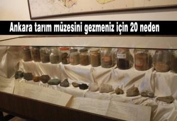 Ankara tarım müzesinden tarım tarihimize ışık tutan 20 antika