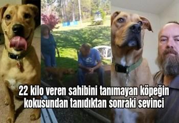 Hastanede 22 kilo veren sahibini tanıyamayan köpek