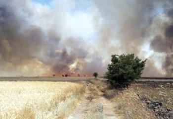 Tarım ÜFE Nisan'da rekor kırdı- yaz aylarında enflasyonda düşüş zor