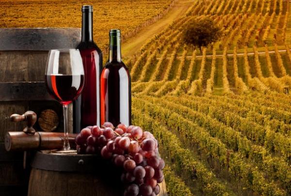 Consumo di vino, gli Usa superano la Francia