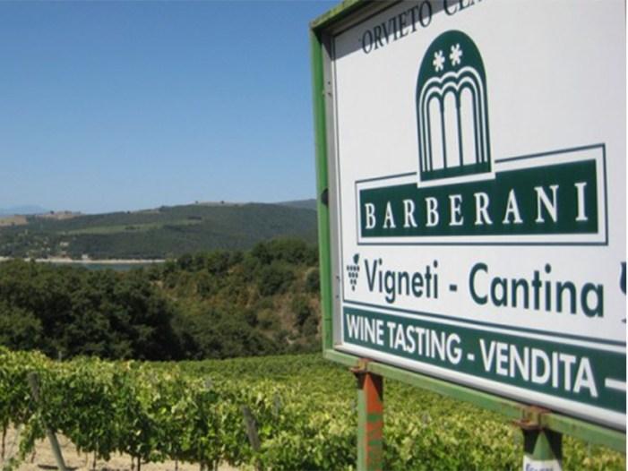 Barberani: la magia degli artigiani del vino