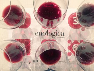 Enologica Montefalco
