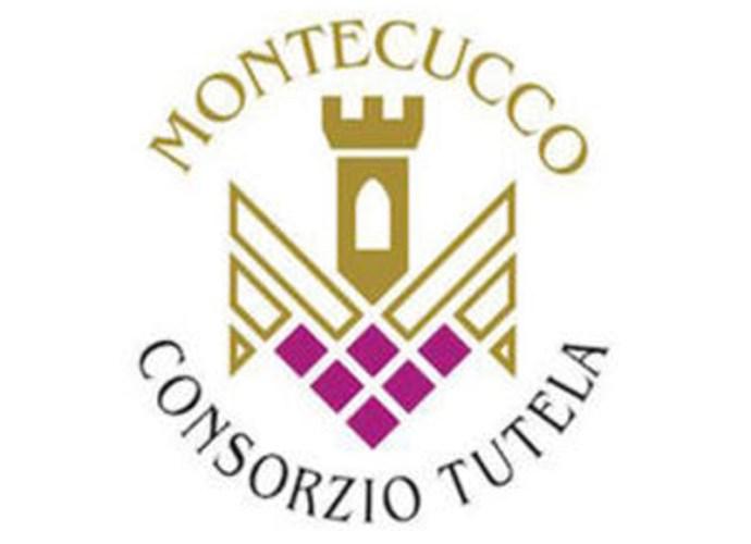 Consorzio-Tutela-Vini-Montecucco-logo-copertina