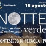 Notte-Verde-locandina-copertina