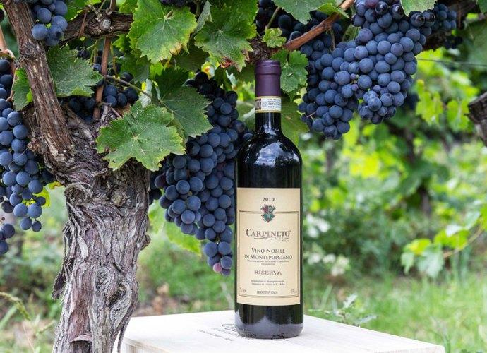 Vino-Nobile-di-Montepulciano-Riserva-2010-Carpineto-copertina