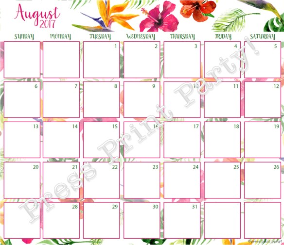 2017 Calendar Printable for Bullet Journals - Vibrant Watercolors - By Press Print Party! August 2017