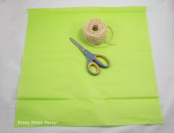 How to Make Tissue Paper Tassels. Easy Tutorial by Press Print Party!