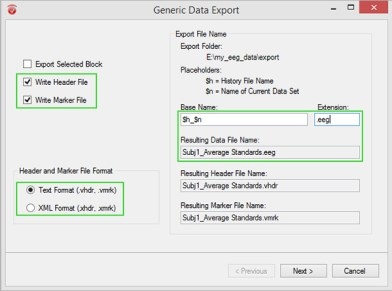 Analyzer export options - Figure 2: Selection of options to create an export in BrainVision native format with Generic Data Export. The usage of placeholders enables you to automatically adapt filename generation to each dataset when the node is applied to other History Files as part of a History Template.