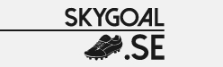 SkyGoal Announces its Supply Module for Cheap Football Kits and Soccer Jerseys from Top Clubs 13