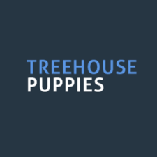 TreeHousePuppies Helps Pet Owners Find the Best Dog Food Solutions for Different Breeds 1