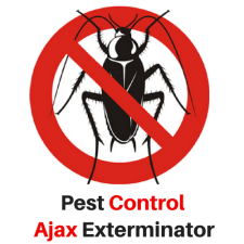 PEST CONTROL AJAX EXTERMINATOR OFFERS RESIDENTIAL AND COMMERCIAL PEST CONTROL IN AJAX 2