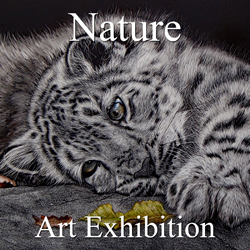 """""""Nature"""" 2018 Exhibition Results Announced by Gallery 3"""