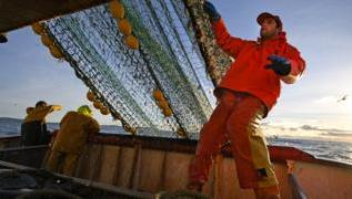 Fishing: New EU rules could have 'grave' impact on UK industry 2